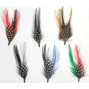 """4"""" Side Feathers (1 DZ Pack)"""